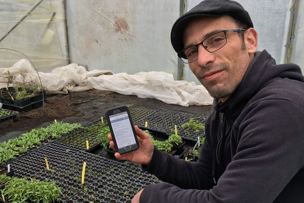 François Bientz peut vendre son stock de plantes aromatiques avec la plateforme Yonne 100% Inclusion