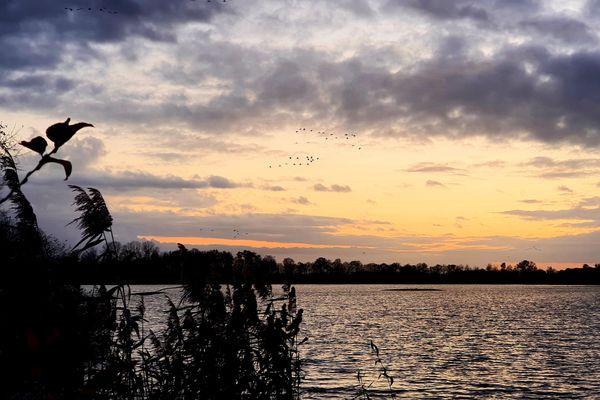 Depuis la digue centrale de l'étang de la Horre, on assiste à de somptueux couchers de soleil.