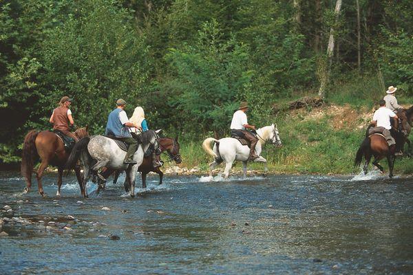 Les cavaliers profitent de la fraîcheur de cette rivière du Val de Sioule dans l'Allier.