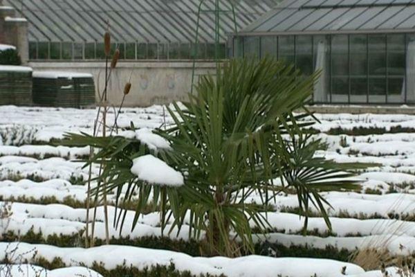 le jardin des plantes de la ville d'Amiens