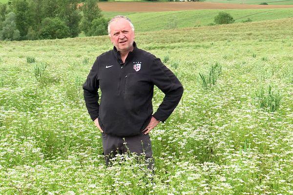 Escazeaux (Tarn-et-Garonne) -Joël Delbeau attend de la main d'oeuvre pour récolter sa coriandre - mai 2021.