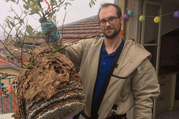 Le nid de frelons décroché par Robin Cochennec.