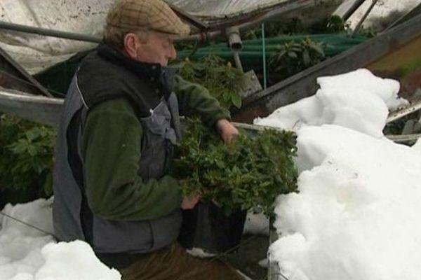 Les horticulteurs bas normands sinistrés en 2013 pour prétendre à une aide financière