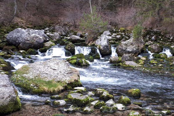A la limite des Hautes-Alpes et de l'Isère, la source des Gillardes.