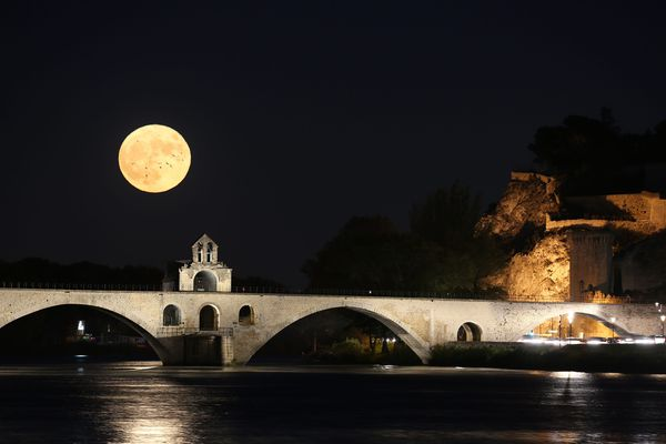 Le Pont d'Avignon de nuit