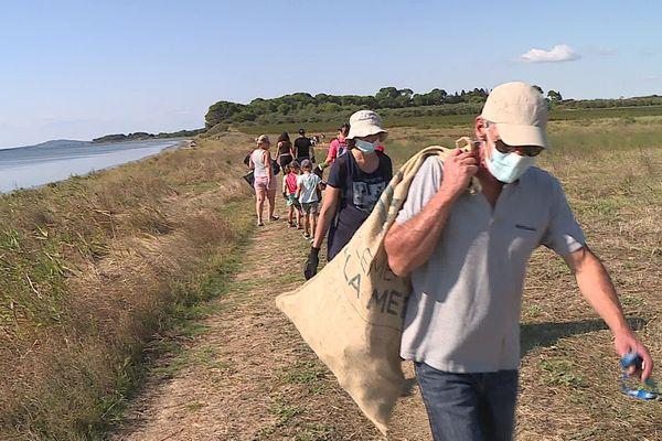 Une centaine de bénévoles ont ratissé les bords de l'étang de Thau.