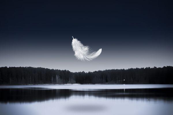 Après Roméo et Juliette et Blanche Neige, Angelin Preljocaj réinvente un autre ballet narratif: le lac des Cygnes.