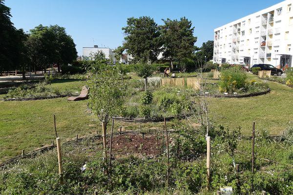 Au pied des immeubles, une forêt comestible permet aux habitants de faire leur cueillette et trouver un peu de fraicheur.