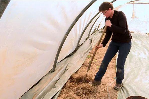 Alexandra Sedon est en pleine action sur son exploitation maraîchère de Saint-Antoine-La-Forêt (Seine-Maritime)
