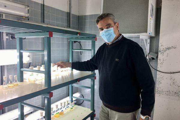 Philipp Hess de l'Ifremer à Nantes a mis en évidence avec sa collègue Véronique Séchet, la toxicité de la micro-algue Dinophysis pour les huitres et les larves de poissons
