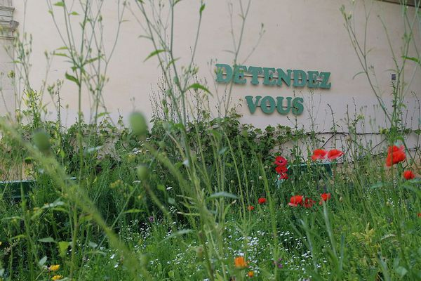 Le jardin de l'Arquebuse à Dijon