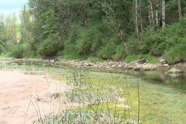 La zone de sécheresse s'étend sur une trentaine de kilomètres entre Morteau et Pontarlier