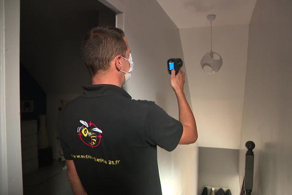 A l'aide d'un pistolet infrarouge, les sociétés spécialisées parviennent à identifier les nids de guêpes.