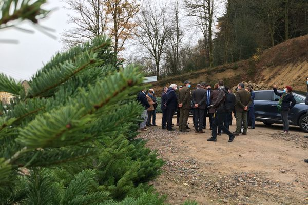 La délégation ministérielle en visite chez les producteurs de sapins du Morvan