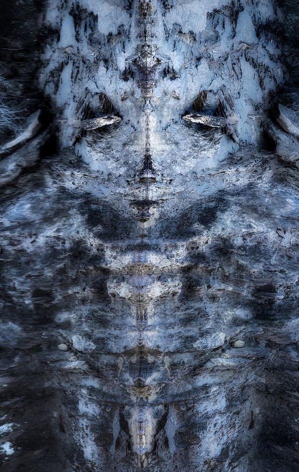 """""""Rock Face"""" a valu à José Pesquero le grand prix du festival de Montier-en-Der. Cette photo d'un reflet de flanc montagneux, initialement prise en format paysage, a été basculée à la verticale pour former un visage."""