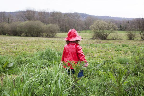 Une petite fille avec un imperméable rouge dans un champ (illustration)