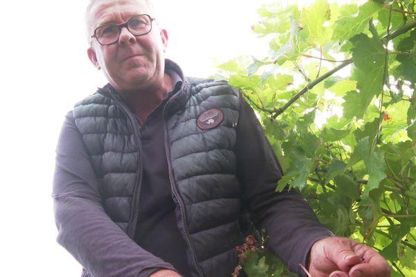 """Laurent Blouin produit du vin bio à Val-du-Layon. """"A nous de gérer nos stocks"""" dit-il."""