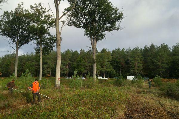 Les agents de l'Office national des forêts s'occupent de la forêt d'Orléans afin de la préserver au mieux