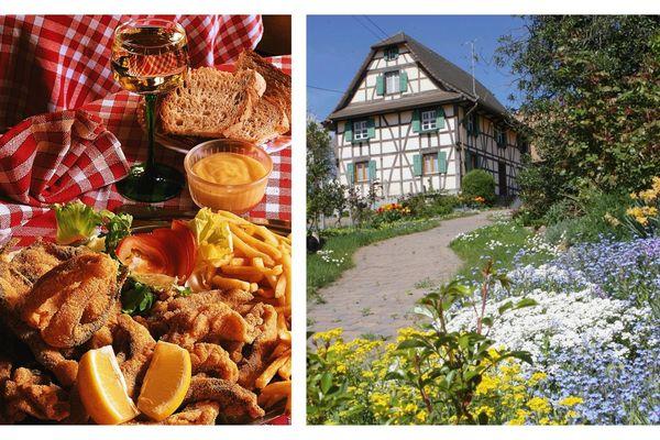 La carpe frite est une spécialité du Sundgau.