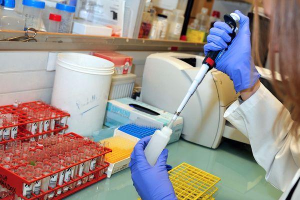 Biomathematica, un start-up ajaccienne, a décroché une bourse de la Nasa de 316 000 euros.