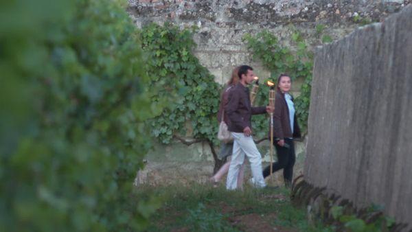 Le clos d'entre les murs, parcelle prestigieuse du château de Parnay.
