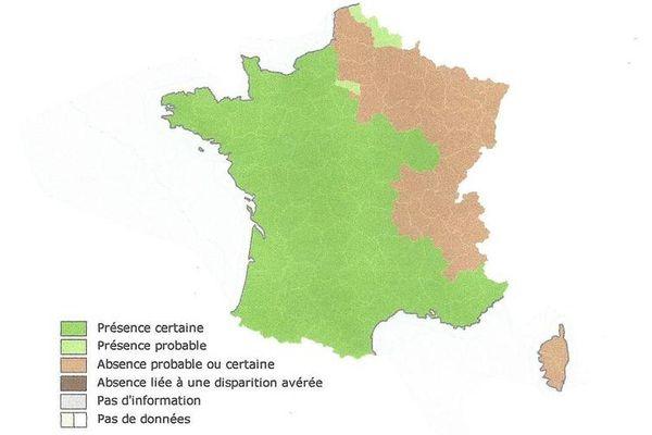 la carte des départements touchés par le frelon asiatique