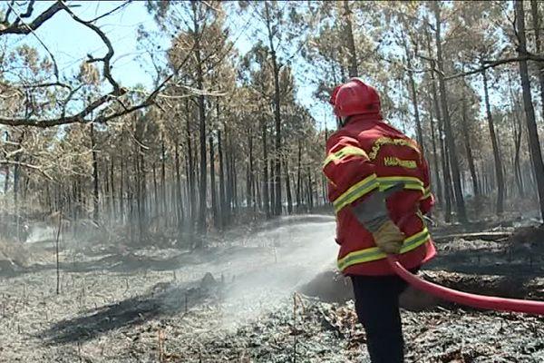 Après l'incendie qui a ravagé 1100 hectares de foret dans le Médoc, une centaine de pompiers est toujours mobilisée.