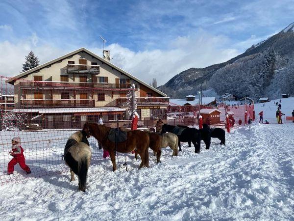 Les chevaux assurent temporairement la remontée des pistes à Saint-Léger-les-Mélèzes, dans les Hautes-Alpes.
