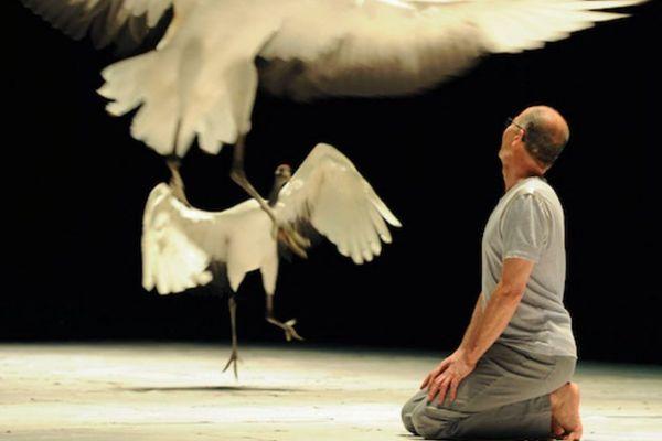 """Le spectacle """"Light Bird"""", chorégraphié par Luc Petton."""