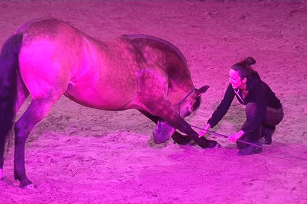 L'une des artistes des cabarets équestres de Pompadour en répétition avec l'un des 10 chevaux du spectacle