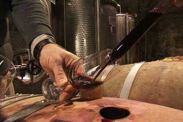 Du vin bio produit à Sommières dans le Gard.