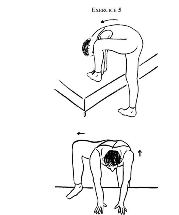 Exercice 5: Étirement des hanches et adducteurs