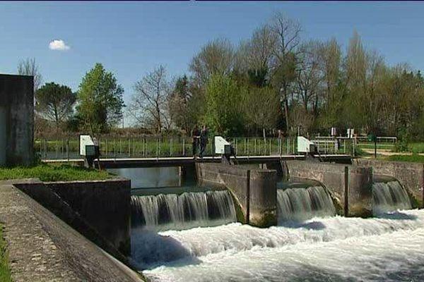 Des passes à poissons ont été aménagées sur les barrages du Marais Poitevin pour faciliter les migrations.