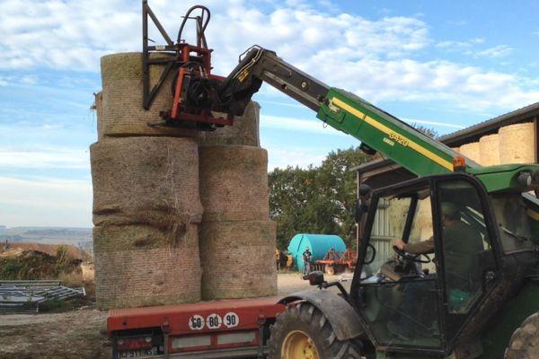 """Face à la sécheresse persistante, la Confédération paysanne lance une opération """"solidarité fourrage"""" à destination d'éleveurs de Bourgogne-Franche-Comté"""