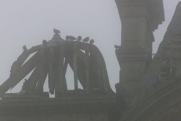 Sur la toiture du château du clos des fées