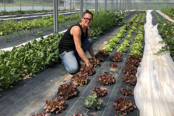 Pour Emilie Lemmer, les premières récoltes ont commencé il y a deux semaines.