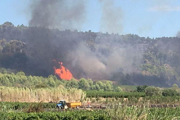 Le feu a repris à Bize-Minervois, samedi matin.