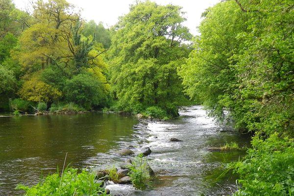 Dans la vallée de Pont Calleck, verdoyante