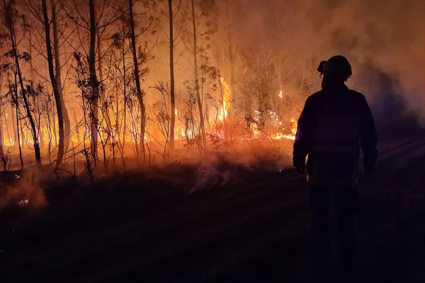 A Avensan, 300 hectares de forêt sont partis en fumée