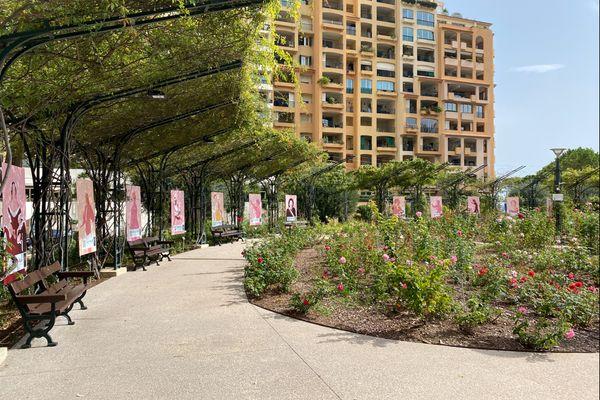 15 panneaux sont visibles en accès libre dans la Roseraie.