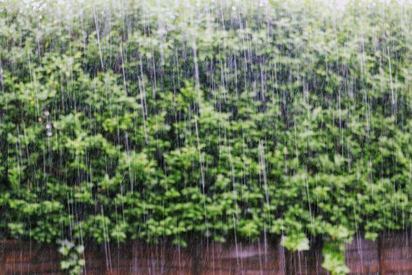 Localement dans le Pas-de-Calais, l'équivalent d'un mois de pluie va tomber en quelques heures. Le département est placé en vigilance orange pluie-inondation.