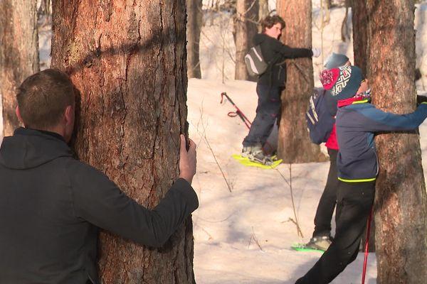 Nouvelle discipline tendance en montagne cet hiver, la sylvothérapie, pour se reconnecter à la nature.