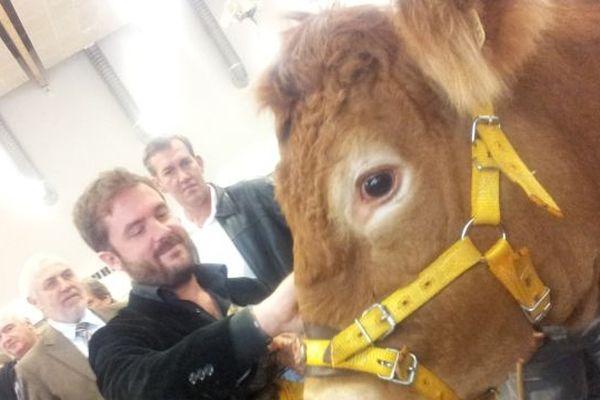 Aurel a reçu ce matin une vache en cadeau !