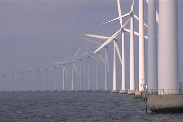 Des pêcheurs prévoient de manifester le 19 juin dans les rues de Caen pour s'opposer à l'implantation d'un parc de 60 éoliennes en baie de Seine