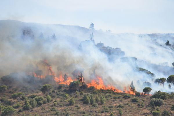Le dégagement de fumées visible aux environs de Cerbère, le 31 juillet 2021.