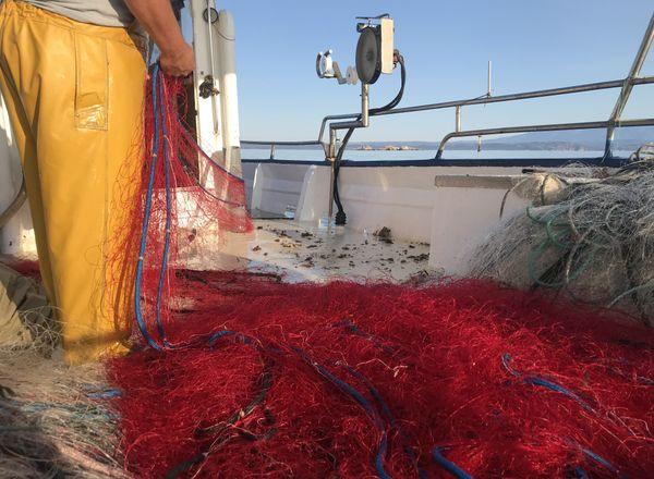 Les pêcheurs insulaires sont de plus en plus inquiets.