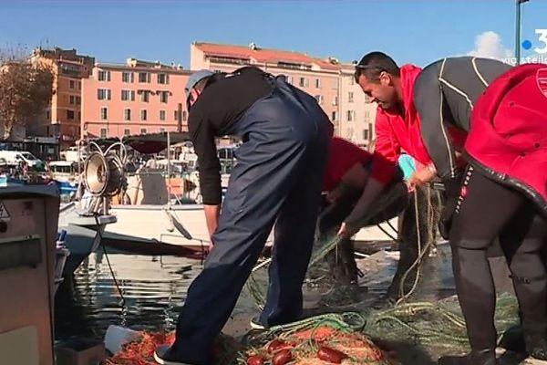 Les sapeurs-pompiers de Corse-du-Sud viennent en aide aux pêcheurs d'Ajaccio. Ils aident à nettoyer le port Tino Rossi.