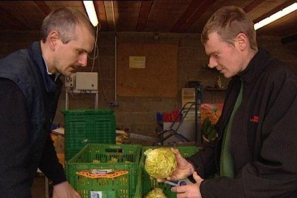 Quand le légume transite vite entre le producteur et l'acheteur, c'est aussi bon pour la planète que pour le porte-monnaie