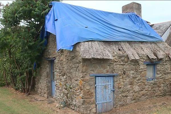 Les toits de chaume du Parc de Brière en danger