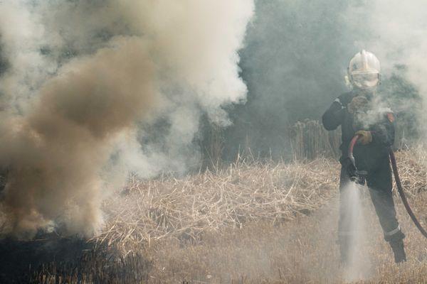 Les pompiers lors d'un feu de végétation